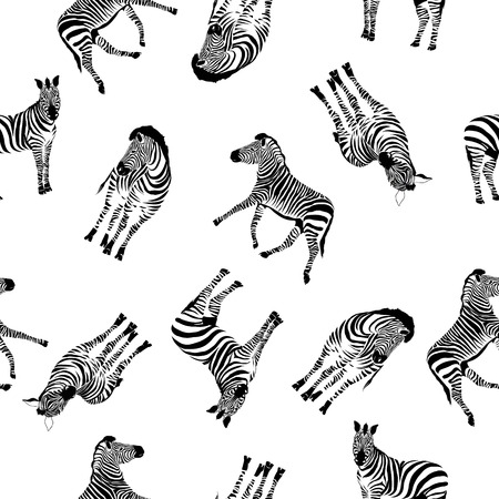 Zebra pattern, illustration, animal. Stok Fotoğraf