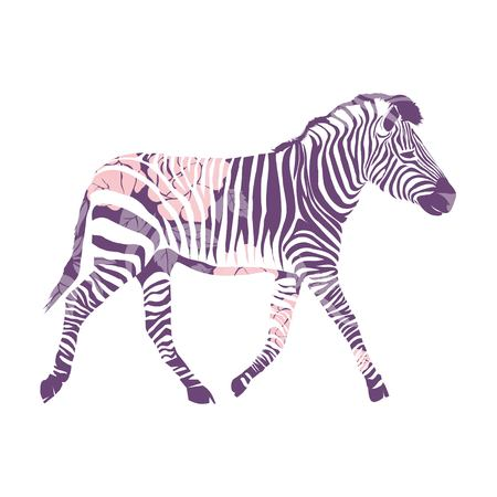 Logo with the head of a zebra. The silhouette of the animal with colors.  イラスト・ベクター素材