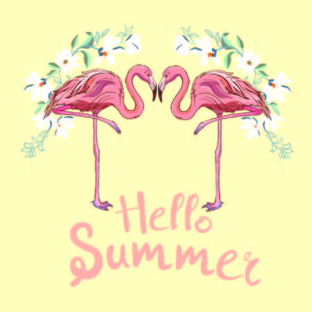 Pink flamingo, vector, illustration bird design print tropical