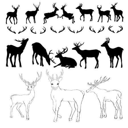 herten silhouet en schets, vector illustratie, dieren, ingesteld op een witte achtergrond, dieren afbeelding Vector Illustratie