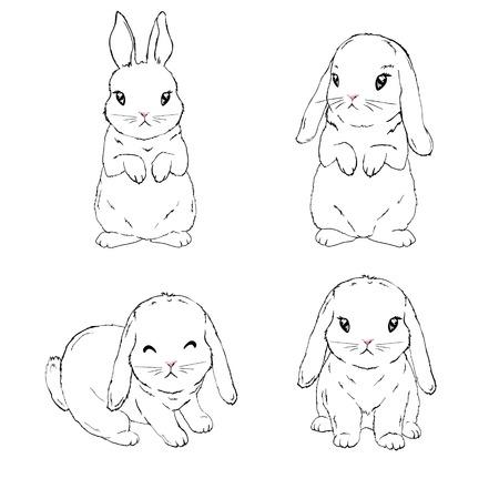 Bunny sketch , rabbit set, hand drawn Isolated vector illustration.