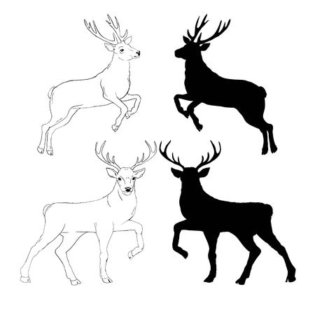 deer silhouette and sketch, vector, illustration, animals, set on white background, animals image