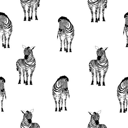 Zebra pattern, illustration, animal.