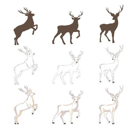 Silhouette de cerf et croquis, vecteur, illustration, animaux, sur fond blanc, image d'animaux Vecteurs