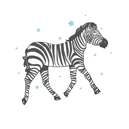 cute zebra vector illustration 向量圖像