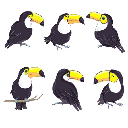 A good illustration of a Toucan in vector format. Cute Toucan bird picture for childrens clothing.