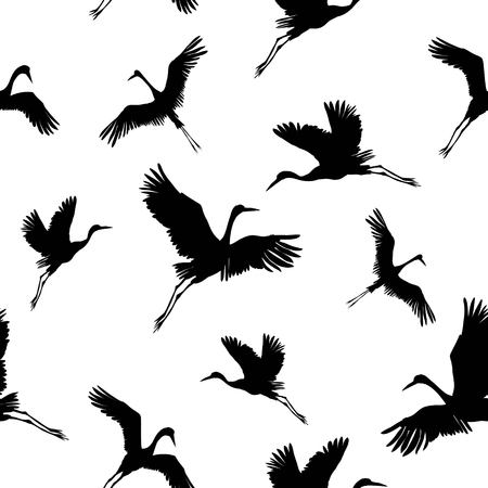 crane birds vector illustration