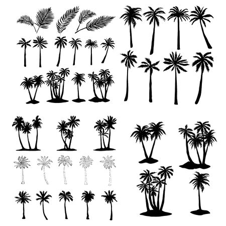 palm tropical tree set icons black silhouette vector illustration isolated on white background