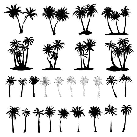 Set of palm tree icons black silhouettes isolated tropical palm trees . Vettoriali