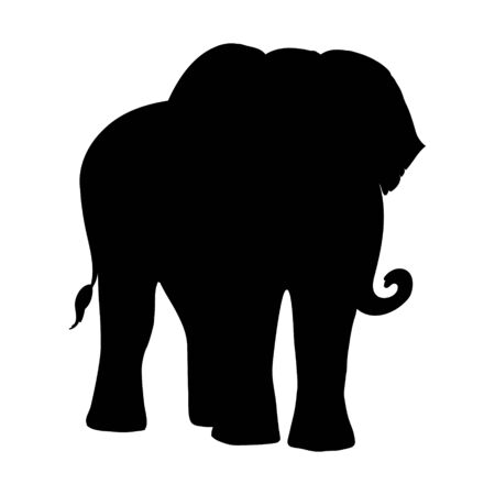 Elephants silhouette isolated on white background