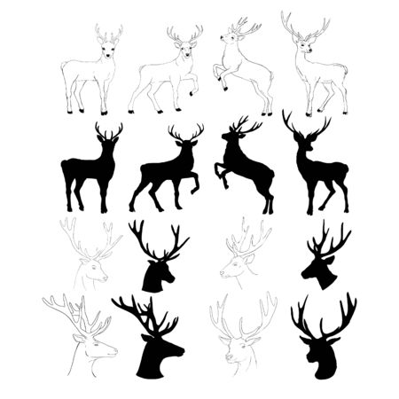 graphic stylization deer head for your design. isolated objects