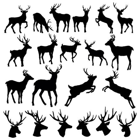 Set of a deer silhouette on white background