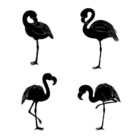 Black silhouette of three flamingos on white background