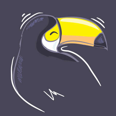 A good illustration of a Toucan in vector format. Cute Toucan bird picture for children's clothing.