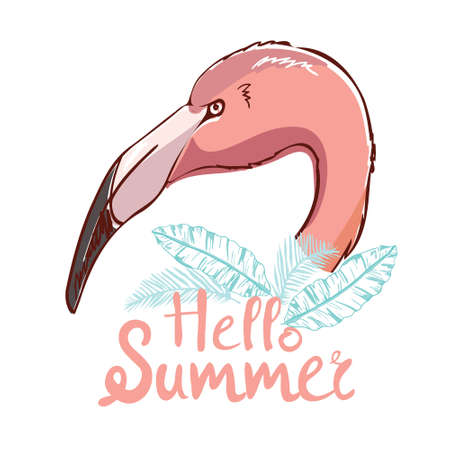 Cute flamingo, vector illustration, summer print design. Illustration