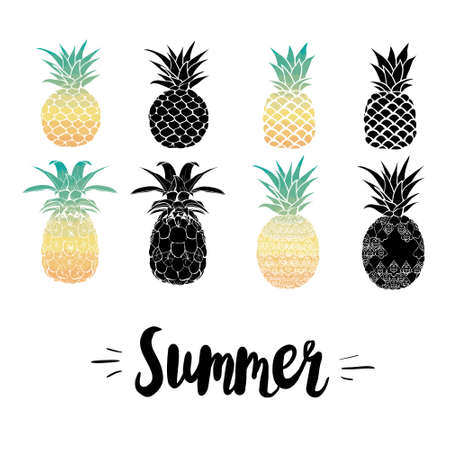 Pineapple vector black silhouette and sketch. Vector illustration. 版權商用圖片 - 150590709
