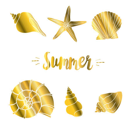 Seth seashell vector illustration isolated on white background with Golden glitter confetti texture. Pearl scallop, oceanic or marine clam shell graphic design. 版權商用圖片 - 154688569