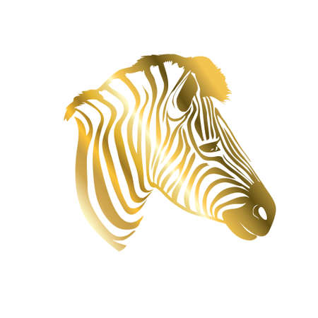 Golden Zebra silhouette. Vector illustration 向量圖像