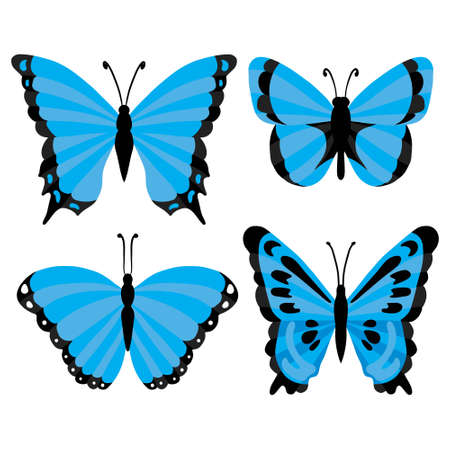 blue tropical butterflies isolated on a white background. Vector, illustration
