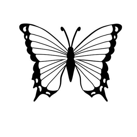 Graphic icon of butterfly. Butterfly tattoo isolated on white background. Vector Standard-Bild - 156384442