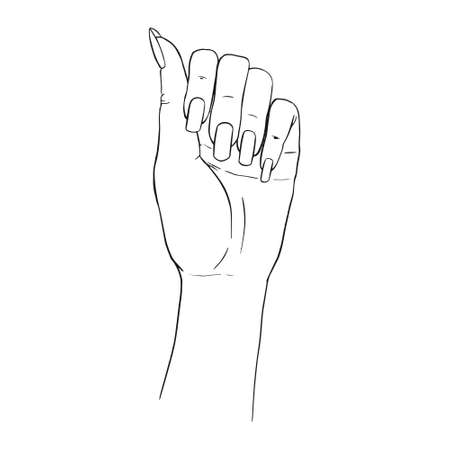 Hand gestures outline vector illustration. Women's girl's female palm drawing. Empty hand showing, beautiful woman hand holding isolated on white background. Stock Illustratie