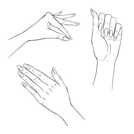 Manicure hands. Vector collection of hand drawn elegant woman hands in various gestures. Manicure, beauty and skincare concept