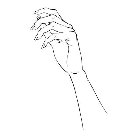 Hand gestures outline vector illustration. Women's girl's female palm drawing. Empty hand showing, beautiful woman hand holding isolated on white background. Vectores