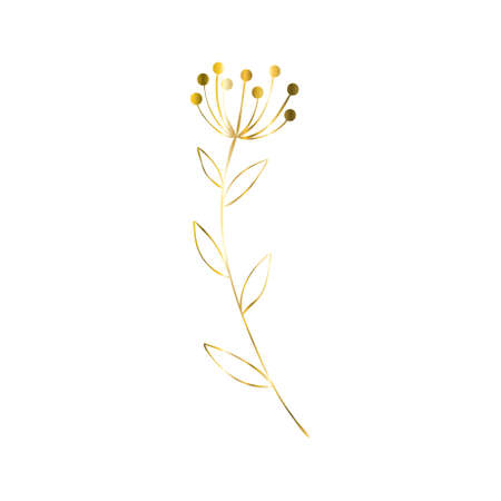 The golden sprig. Vector image with a golden twig. Template for the logo element. Editable geometric element isolated on white. Illustration