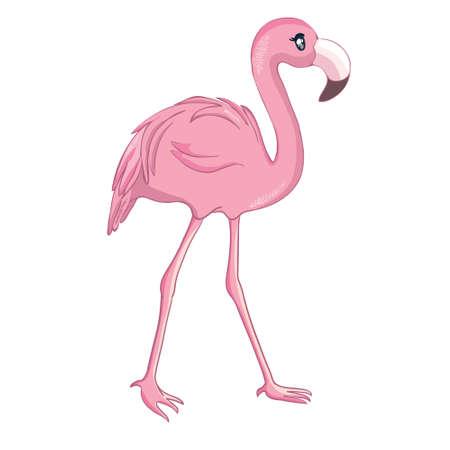 Cartoon flamingo isolated on white background. Vector illustration. Illustration