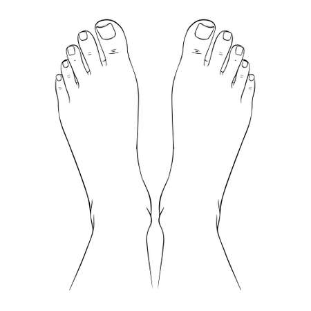 Beautiful female feet barefoot sketch. Black-and-white outline sketch. A design element for spa, manicure or cosmetics. Vector illustration of a contour. Illustration