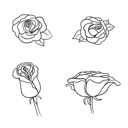 Sketch Rose Flower Set. Pencil sketch flowers with leaves on stem. Graphic emblems. Hand-drawn contour lines and strokes.
