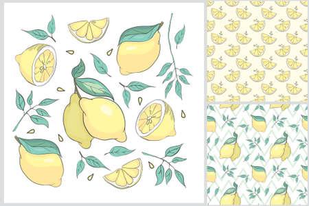 Hand drawl summer set with Lemon. Vector Lemon print for fabric or wallpaper.
