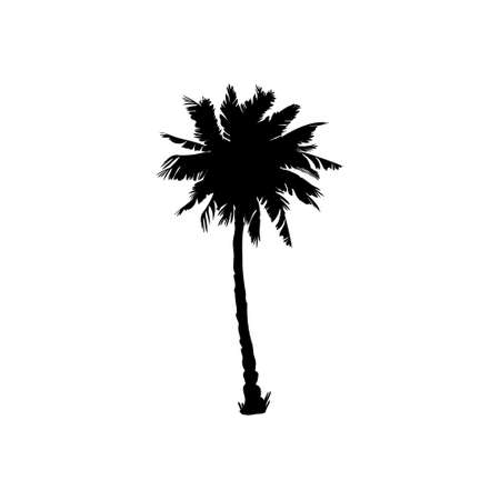 coconut palm silhouette, palm tree illustration, vector summer sign on a white background