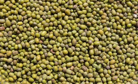 munggo: Abstract background: Green mung beans