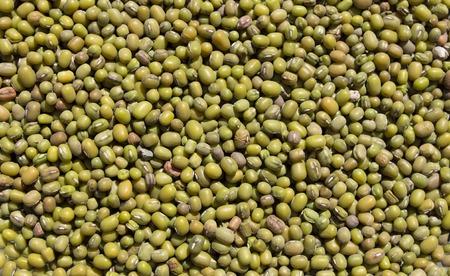mung: Abstract background: Green mung beans