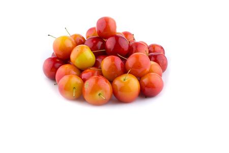 palatable: cherry-plum isolated on white background Stock Photo