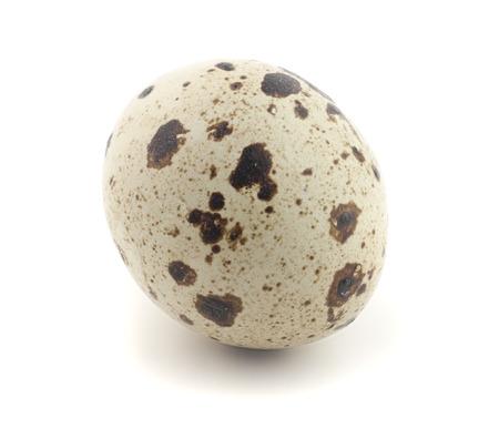 quail egg: One quail egg. Isolated on white background