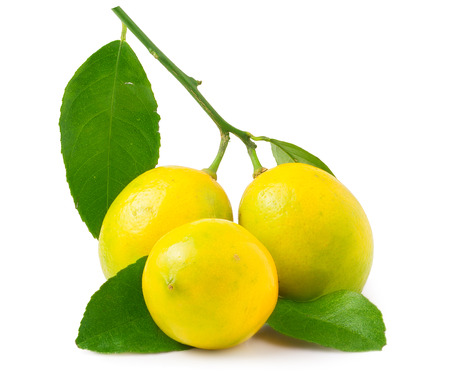 fruition: Three lemons on the white background isolated.