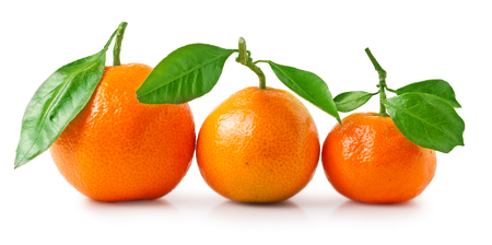Three tangerines with leaves on a white background. Фото со стока