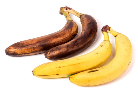 moulder: rotten and ripe bananas isolated on white background. Stock Photo