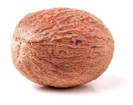 nutmeg: One nutmeg whole  isolated on white background.