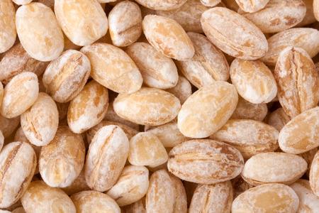 pearl barley: pearl barley as background close up macro.