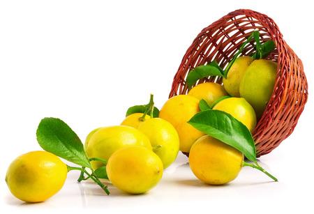 bushel: Lemons in basket isolated on white. Best quality studio photo.
