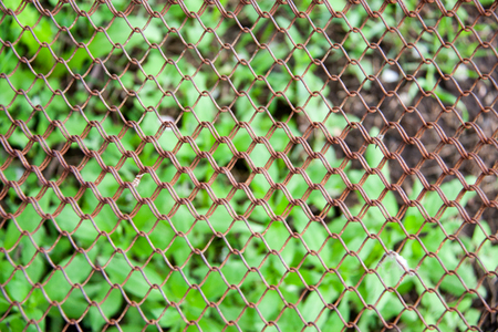 metal mesh: Background of the metal wire mesh fence.