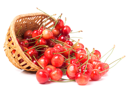 alycha: pink cherries in a wicker basket isolated on white background.