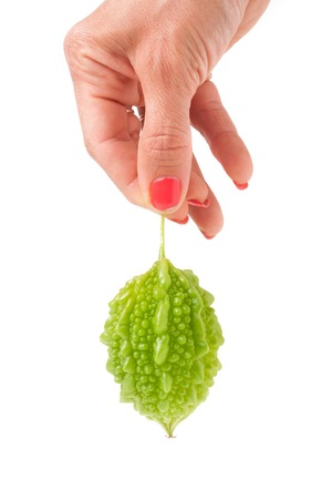 one green momordica or karela in hand isolated on white background. Stock Photo