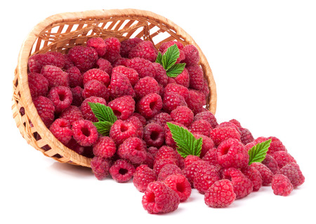 spilled: raspberries spilled from a wicker basket isolated.