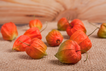 ripe physalis scattered on burlap on the table.
