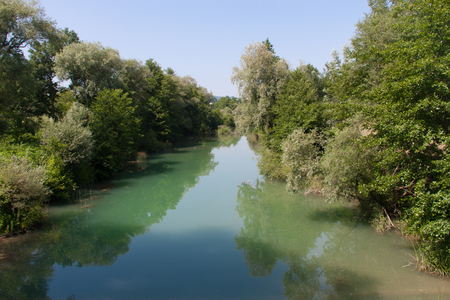 thickets: small river in the dense thickets of trees. Stock Photo
