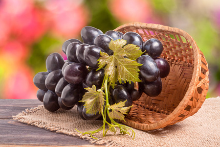 wooden basket: Blue grapes in a wicker basket on wooden table with a blurred background.